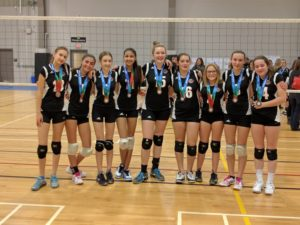 TIGERS 14UG Black-Bronze